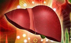 Chia sẻ thói quen tốt vào buổi sáng bảo vệ sức khỏe gan