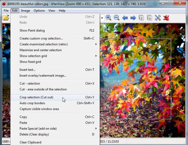 IrfanView - phần mềm chỉnh sửa ảnh trên máy tính
